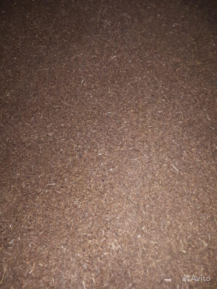 Эспарцет, семена купить на Зозу.ру - фотография № 6
