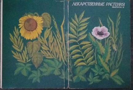 носочки открытки лекарственные растения 1987 вариант