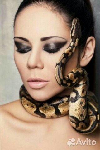 Фотосессии со змеями веб модели платят налоги