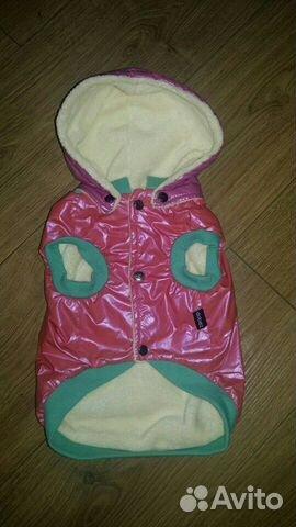 Одежда для собаки 89126837990 купить 1