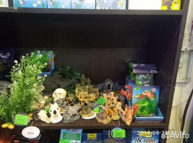 Decorations for aquarium 89081257208 buy 1