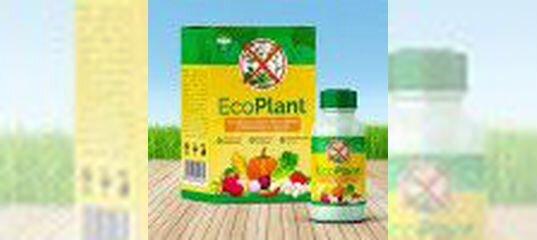 Eco Plant мощнейшее против сорняков в Назрани