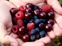 Продам ягоды
