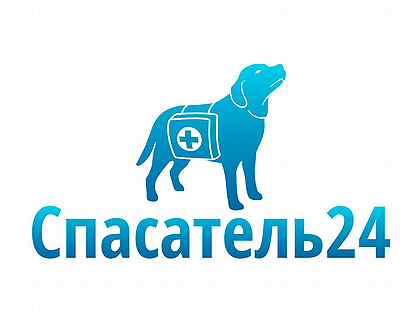 Работа для девушек на полдня работа в москве на авито девушек
