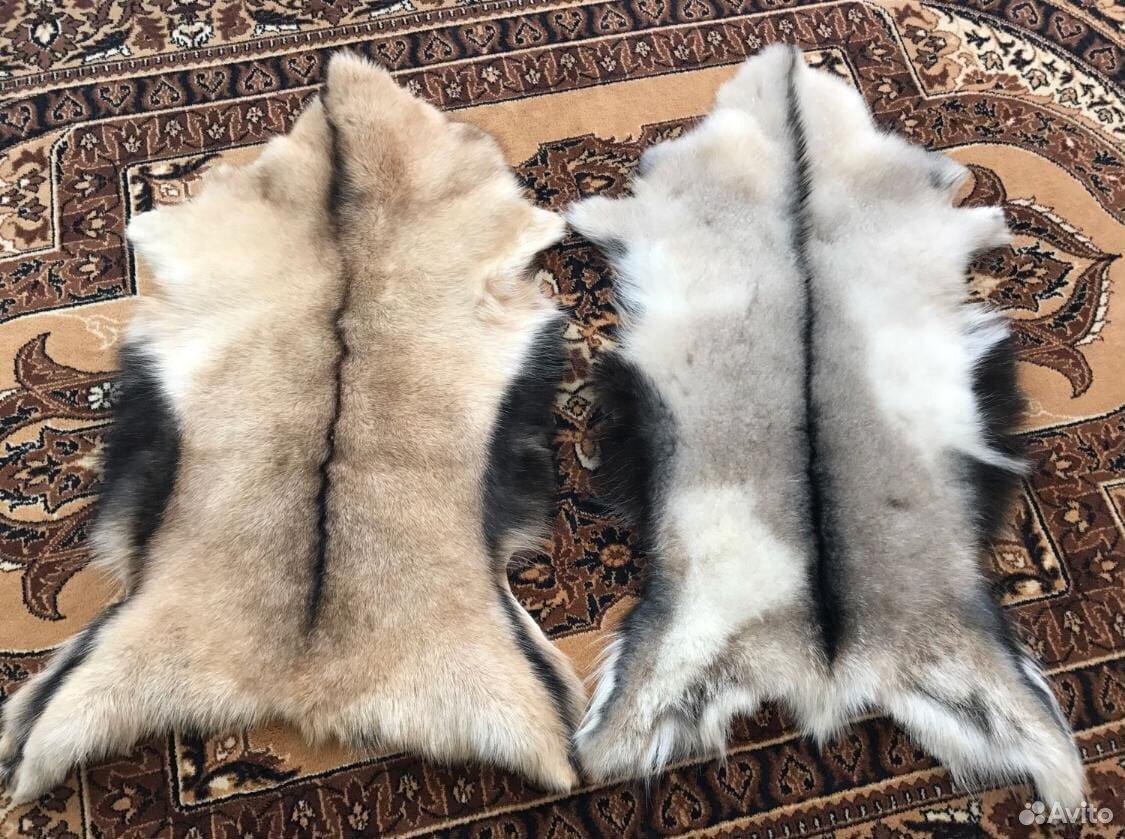 Шкуры козьи овечьи  89664444472 купить 1